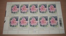 """België 3384** Gentse Floraliën VI - Rozen (With Scent Of Flowers , Met Bloemengeur/Aroma) Rosa """"Pink Iceberg"""" Pl 6 - Kleinbögen"""