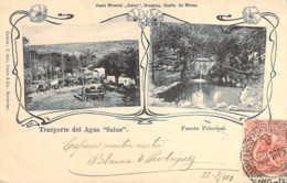 URUGUAY Trasporte Del Agua Mineral Salus Y Fuente Principal Sources Minérales Salus 1904 - Uruguay