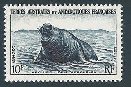 TAAF 1956 - YT N°6 - 10 F. - Faune - Elephant De Mer - Kerguelen - NEUF** - TTB Etat - Franse Zuidelijke En Antarctische Gebieden (TAAF)