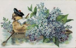 "Carte Avec Petit Poussins "" Le Bayard "" Circulée En 1906 - Dieren"