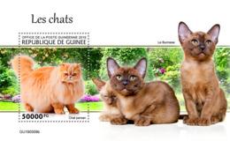 Guinee 2019 Cats S/S GU190509 - Célébrités