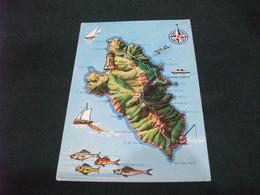 CARTA GEOGRAFICA ISOLA DEL GIGLIO PESCI NAVE SHIP TRAGHETO  PESCA - Carte Geografiche