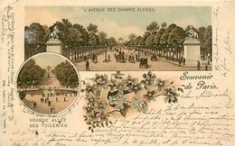 75 SOUVENIR DE PARIS  DE 1898 AVENUE DES CHAMPS ELYSEES  - PRIX DE DEPART 1 €00 - Champs-Elysées