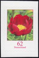 3121I Pfingstrose 62 Cent - Selbstklebend Aus Folienblatt 42, Rastertype I, ** - Unclassified