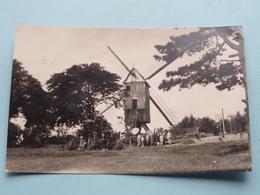 MONT-CASSEL Le Moulin Kasteel Meulen ( Molen / Mill ) ( Imp. G. Plancke Hazebrouck ) Anno 1950 ( Voir Photos ) ! - Dunkerque