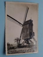 MONT-CASSEL Le Moulin ( Molen / Mill ) ( CIM ) Anno 195? ( Voir Photos ) ! - Dunkerque