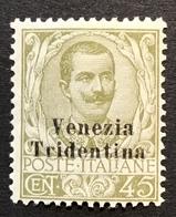 """Trentino-Alto Adige 1918 Sa. 25 = 260€ Mint * VF """"VENEZIA TRIDENTINA"""" (1914-18 War Italy Regno D' Italia Italie - Trente"""