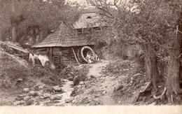 MOULIN À EAU / WATER MILL - PHOTO APPLIQUÉE SUR UNE CARTE ENTIER POSTAL / REAL PHOTO On STATIONERY CARD ~ 1900 (ad728) - Rumänien
