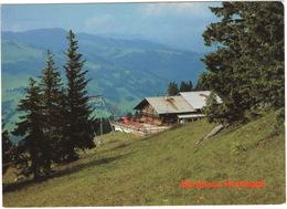 Schönried - Berghaus 'Horneggli' L. Zwahlen - (Schweiz/Suisse) - BE Berne