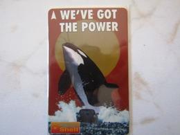 SINGAPORE   ORC         2SSLA - Dolphins