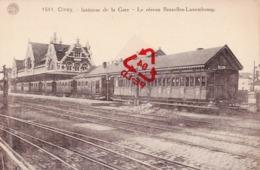 CINEY - Intérieur De La Gare - Le Réseau Bruxelles-Luxembourg - - Ciney
