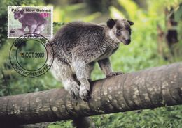 Grizzled New Guinea Tree Kangaroo WWF First Day Cover Stamp Postcard - Animales