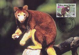 Matschies Tree Kangaroo Papua New Guinea WWF Stamp First Day Cover Postcard - Animales