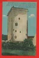 01587 - SAONE ET LOIRE - MONYCENIS - La Tour Du Bost - Sonstige Gemeinden