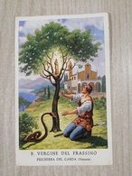 Santino B. Vergine Del Frassino In Peschiera Del Garda (VR) - Images Religieuses