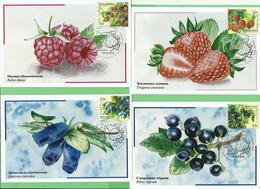 RUSSIA 2020 Russia 4 Maximum Cards Cancelled  KRASNODAR Flora Of Russia. Berries - 1992-.... Federation