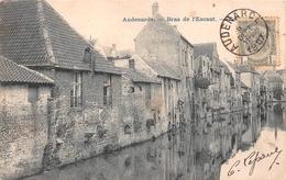 Audenarde - Bras De L'Escaut - Bourg En 1907 - Oudenaarde
