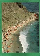 (83) La Seyne Sur Mer Crique Et Plage Du Jonquet ( Plage Naturiste ) Une Des Rares Plages Autorisee Aux Naturistes 1984 - La Seyne-sur-Mer