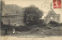 MEUNG SUR LOIRE  (Loiret) Ruines De Rondonneau Cycliste RV - France