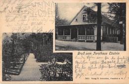 Cüstrin, Küstrin, Kostrzyn Nad Odrą – Forsthaus, 1906 - Neumark