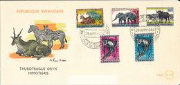 RWANDA FDC   1964 TAUROTRAGUS ORYX HIPPOTIGRIS - Rwanda