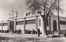 CPA - Ain Bessem - Salle Des Fêtes - Algerije
