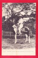 E-Vietnam-299A25  HANOI Un Cavalier Annamite Et Cheval Du Pays, Cpa Précurseur BE - Viêt-Nam