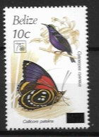 BELIZE 1994 BUTTERFLIES, Birds - Mariposas