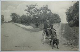 BRIARE Service Postal - Attelage à Chien - Briare