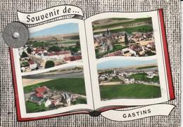 77 - Carte Postale Semi Mi Moderne Dentelée De   SOUVENIR DE GASTINS    Multi Vues - France