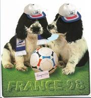 FRANCE 98- Carte Fantaisie - Football