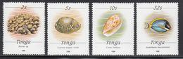 1990 Tonga SMALL SIZE  Marine Life Definitives Complete Set Of 4 MNH  Shells Fish - Tonga (1970-...)