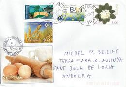 Lettre De Sarajevo, 2020 (alimentation), Adressée Andorra, Avec Timbre à Date Arrivée - Bosnie-Herzegovine