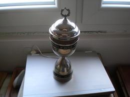Cup Prvaku U Skifu Vrhunskom  25 Godina Crvene Zvezde - Canottaggio