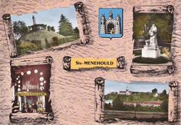 CPM FRANCE SAINT MENEHOULD MARNE Multivues - France