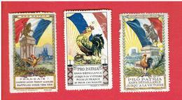 3 VIGNETTES DELANDRE GUERRE 1914 1918 PRO PATRIA LE COQ FRANCE  WWI POSTER STAMP CINDERELLA - Militair