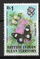 BRITISH INDIAN OCEAN TERRITORY 1973 BUTTERFLIES - Butterflies