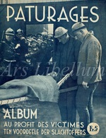 Album / Au Profit Des Victimes / Paturages / Fief De Lambrechies / 1934 / 2 Scans / Catastrophe Minière / Quaregnon - Boeken, Tijdschriften, Stripverhalen