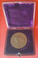 Pre WWII, Austria, Österreichischen Kurzhaar Klub - Double Side Medal In Case, Medailleur F. Kounitzky - Bronzen