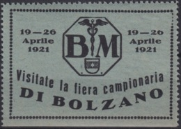 F-EX16630 ITALY ITALIA CINDERELLA 1921 EXPO FAIR BOLZANO ORIGINAL GUM - Otros