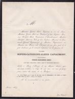 PASSY PARIS CAPIAUMONT Sophie Veuve SIRET 77 Ans 1867 Famille DUHAMEL - Décès