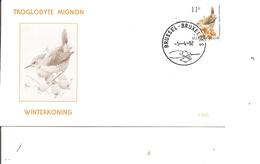 Belgique - Buzin - Troglodyte Mignon ( FDC De 1992 à Voir) - FDC