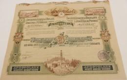 Titre Ancien - Apostolake - Société Anonyme Roumaine Pour L'Industrie Du Pétrole - Titre De 1908 - Pétrole