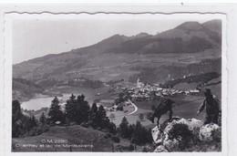 Charmey Et Le Lac De Montsalvens. Paysan Et Chèvre, Carte-photo - FR Fribourg