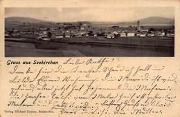 SEEKIRCHEN AUSTRIA~PANORAMA GRUSS Aus~1904 MICHAEL ZAUNER PHOTO POSTCARD 43402 - Seekirchen Am Wallersee