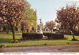 Ramsey War Memorial Cambridge Womens Rare 1980s Postcard - England