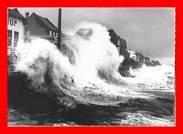 CPSM/gf (50) AGON-COUTAINVILLE.  Les Belles Marées D'équinoxe....S2066 - Autres Communes