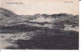 Blankenberghe - Dans Les Dunes - Blankenberge