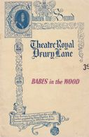 Babes In The Wood Robin Hood London Pantomime Theatre Programme - Théâtre