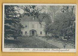 C.P.A. Silesie - Bolkenhain In Schlesien - Polen